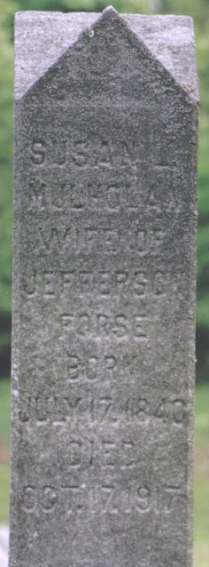 Susan Mulhollan FORCE (1841-1917)