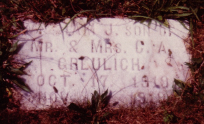 William J. Greulich (1919-1919)