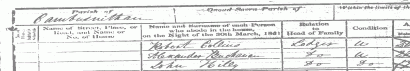 James Buchanan 1851 Census enumeration