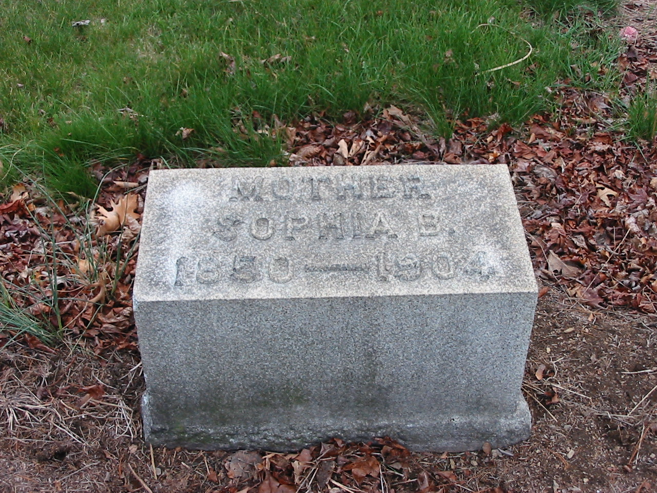 Sophia B. (Hepperly?) Hocker (1850-1904)