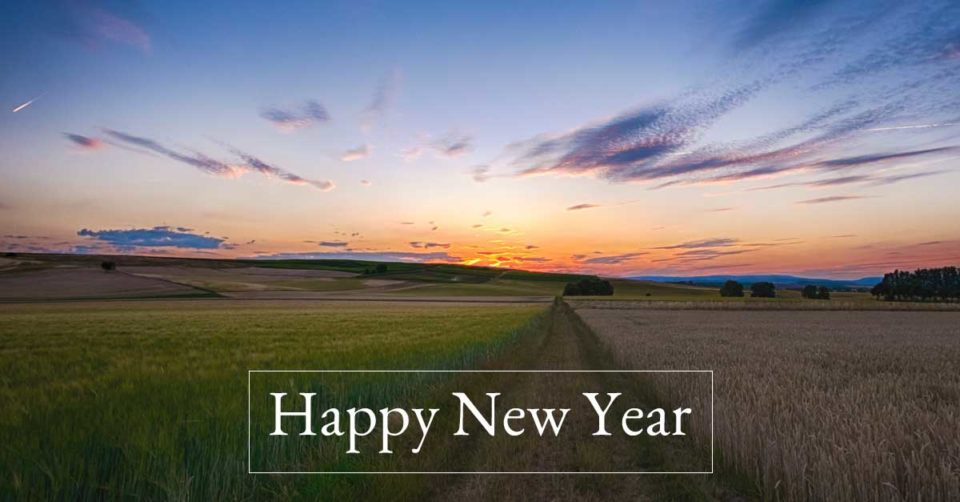 Happy New Year Dawn photo