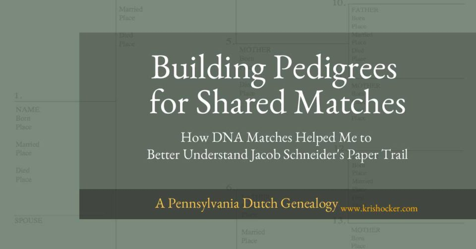 Building Pedigrees for Shared Matches